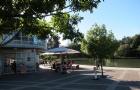 怀卡托大学为什么那么多人去读?