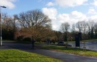 """埃克塞特大学:被《泰晤士报》描述为""""英国最美的花园式校园"""""""