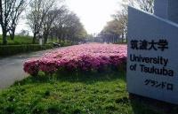 申请筑波大学,这些你都要提前备好