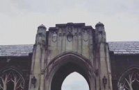 康奈尔大学什么专业最好?