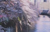 大龄男毕业多年,历经波折!成功申请大阪语言学校
