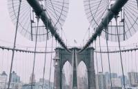 精心策划,让你的申请没有短板,获纽约大学录取!