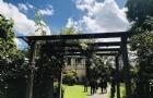 2020年QS世界大学排名梅西大学排名同比上升45个位次