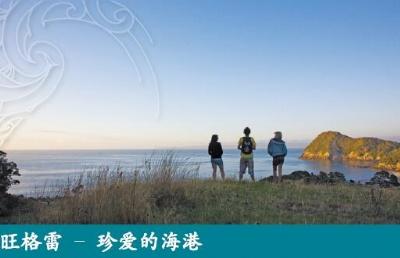 新西兰北陆理工学院申请难度有多大?