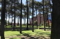 澳洲新南威尔士大学宿舍选择方式有哪些?