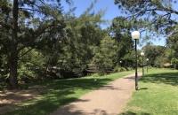 澳洲新南威尔士大学有几个学院?