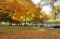 如何看待弗吉尼亚大学?