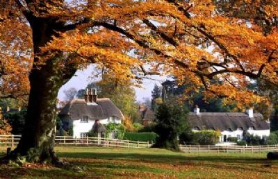 新西兰留学:奥塔哥大学毕业后可以回国考研吗?