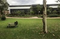 全球第二大留学目的地澳大利亚