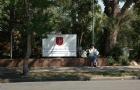 澳洲天主教大学优势专业大盘点!快来PICK一下吧!