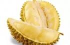马来西亚特产大盘点,你最喜欢吃哪个呢?