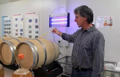 新西兰葡萄栽培和酿造在新西兰和世界范围的行业发展前景