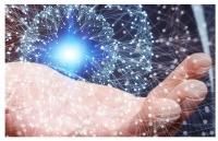 惠灵顿维多利亚大学名牌专业之――信息系统专业介绍