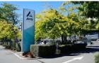 为什么Ara坎特伯雷理工学院在国内知名度这么高?