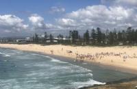 澳洲留学性价比高的大学