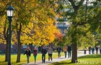 术业有专攻,加拿大高中背景拿下密歇根大学安娜堡分校录取!