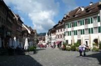 美丽小镇内的瑞士蒙特勒酒店工商管理大学