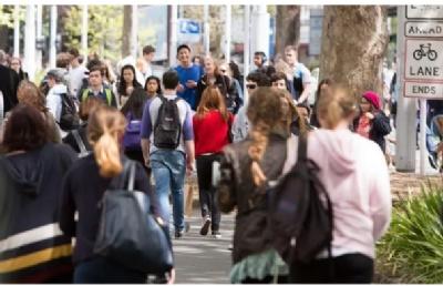 新西兰留学:奥克兰大学心理学专业解读
