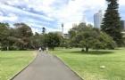 怎么申请在澳大利亚的工作实习?