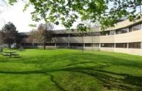 为什么毕索大学在国内知名度这么高?