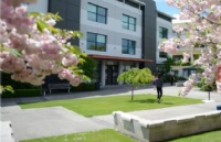 国内本科生怎样考上东部理工学院?