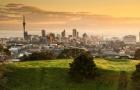 新西兰留学:要从多种渠道掌握勤工俭学的信息