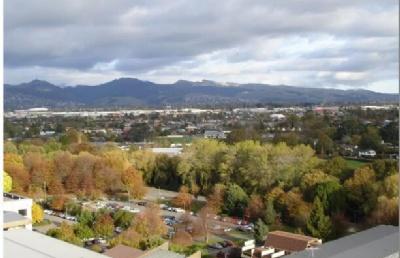 2020年新西兰留学生租房避坑指南!