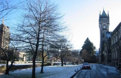 要有多优秀才可以上奥塔哥大学?