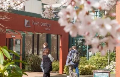 新西兰南方理工学院7级信息技术本科课程介绍