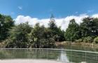 新西兰汉密尔顿最美好的就是新鲜的空气与慢节奏的生活