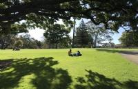 新南威尔士大学专业推荐