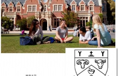新西兰林肯大学本科每年收多少中国人?