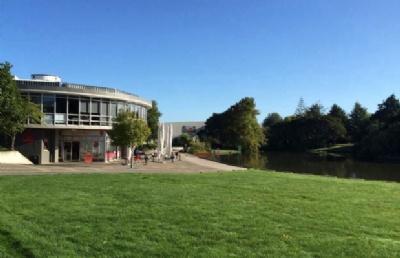 怀卡托大学本科每年收多少中国人?