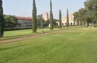 辗转坚持不放弃,成功圆梦美国圣路易斯华盛顿大学录取