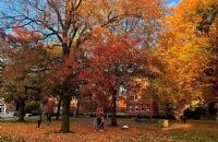 普林斯顿大学申请时间