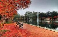 塔夫斯大学生活费加学费一年大概多少钱?