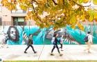 怎么做才能申请到美国大学奖学金呢?