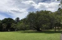 澳洲塔斯马尼亚大学毕业生起薪有多少呢?