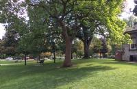 如何进入多伦多大学就读?