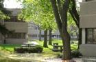 莱斯布里奇大学中国留学生比例