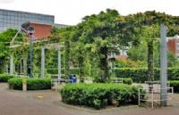 爱尔兰都柏林城市大学商学院的王牌专业,选到就是赚到!