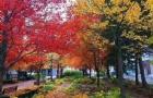 加拿大留学小百科―――生活小贴士