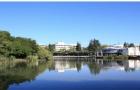 新西兰留学怀卡托大学毕业后工作机会及职业前景