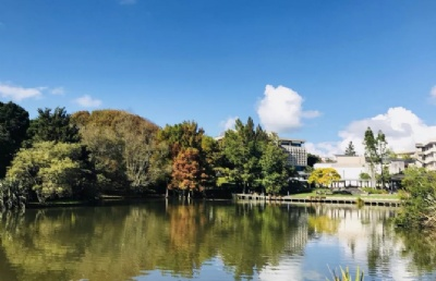 新西兰怀卡托大学语言及预科学院预科及英语语言课程