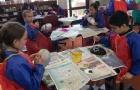 H同学获新西兰早教学跟学校环境上都非常顶尖的ACG桑德兰中学offer