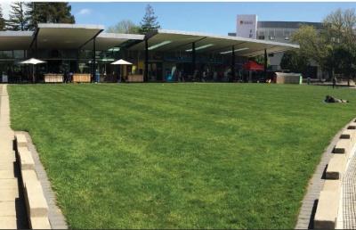 新西兰留学:怀卡托大学文学学士课程介绍