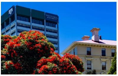去新西兰留学读经济学专业课程,选择哪所大学比较好呢?