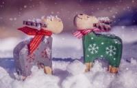 圣诞狂欢月即将到来!阿德莱德有这些好玩的地方值得你去…