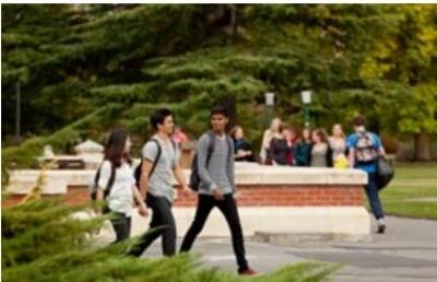 新西兰留学:术业有专攻的林肯大学商业课程介绍