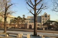 韩国最大的综合大学之一:高丽大学